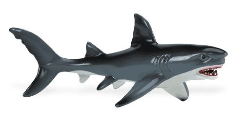safari (サファリ) ホオジロザメ 275029