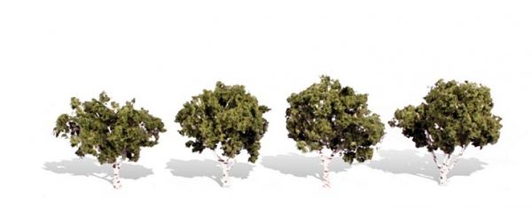 ウッドランド 完成樹木 白樺の木 広葉樹 ウォーターエッジ H約5-7.5cm 4本入