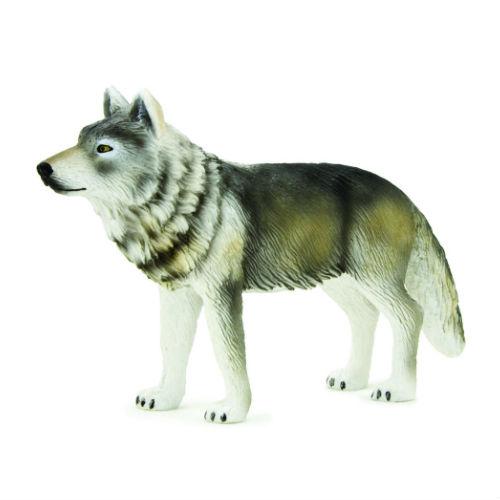 Mojo/ANIMAL PLANET オオカミ 387025