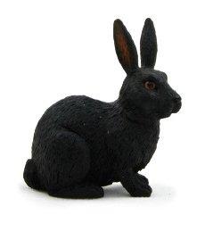 Mojo/ANIMAL PLANET 黒ウサギ 387029