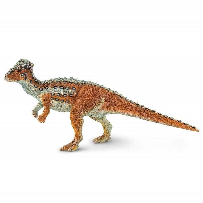safari (サファリ)パキケファロサウルス 100350
