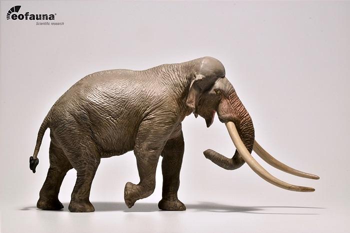 eofauna(エオファウナ) ストレート牙象 (パレオロキソドン ) 1/35 大型 精巧 フィギュア【全商品・全在庫】【正規品】
