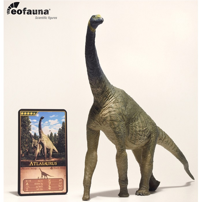 eofauna(エオファウナ) アトラサウルス 1/40 大型 精巧フィギュア【全商品・全在庫】【正規品】