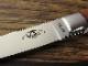 モキナイフ TS-535J トラウト&バード 2.0 かりん シースナイフ AUS-8 ,Moki Knife