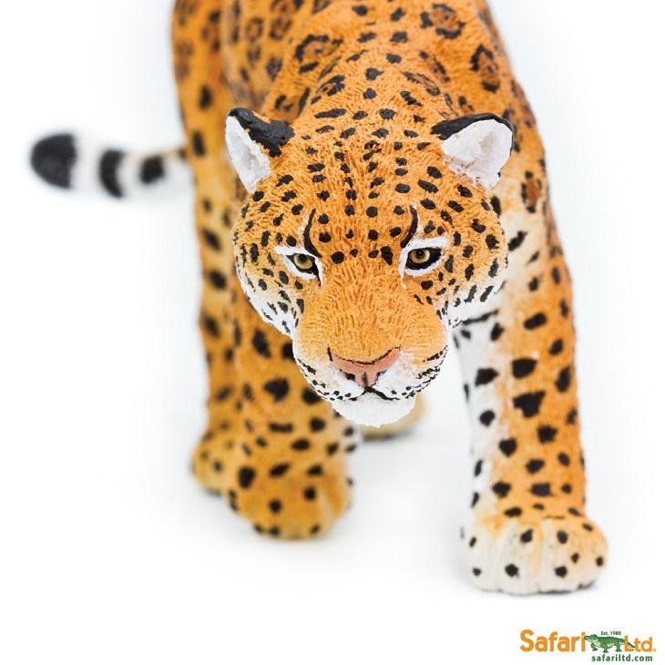 safari (サファリ) ジャガー 227729