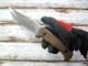 キズリャル/キズニャル カスピアン AUS-8鋼/ウォールナットハンドル ロシア製 ナイフ Kizlyar Supreme CASPIAN