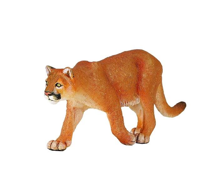 safari (サファリ)ピューマ 291829