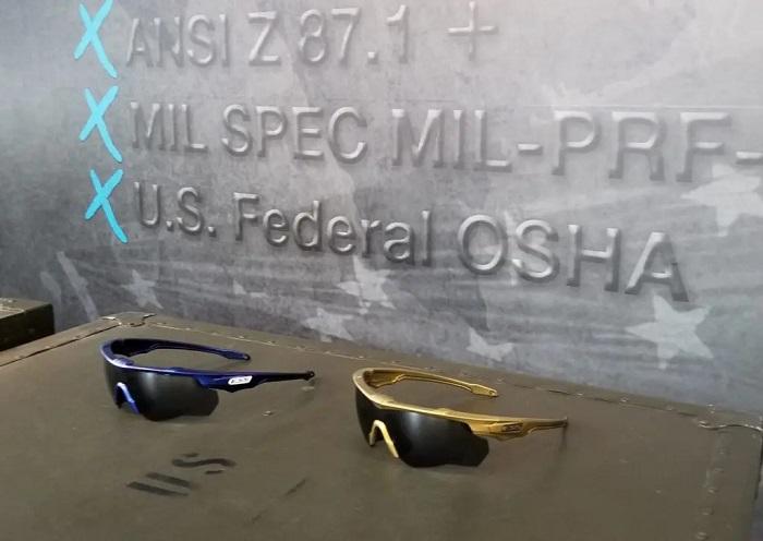 ESS クロスブレード Crossblade NARO セラコート ゴールド/スモークグレーレンズ サングラス 9034-108【日本正規品】