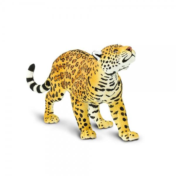 safari (サファリ) WWジャガー 100034