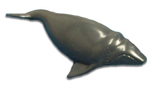サイエンス&ネイチャー オーストラリア ミナミセミクジラ 75386 (動物,フィギュア)