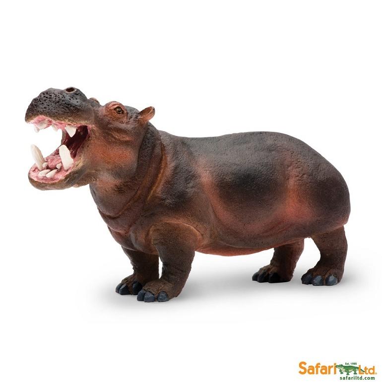safari (サファリ)カバ2 229029