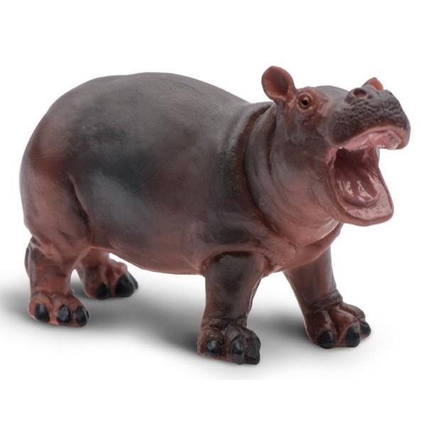 safari (サファリ) カバ(仔) 270529