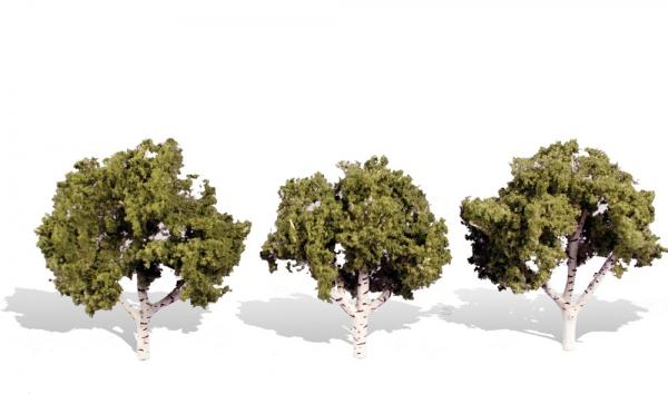 ウッドランド 完成樹木 白樺の木 広葉樹 ウォーターエッジ H約7.5-10cm 3本入