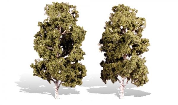 ウッドランド 完成樹木 白樺の木  広葉樹 ウォーターエッジ H約20-23cm 2本入
