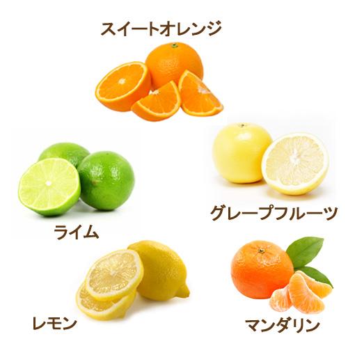 アロマオイル セット 柑橘系シトラス 10mlx5本 (C) 【送料無料】(エッセンシャルオイル 精油)  【グレープフルーツホワイト スイートオレンジ マンダリン ライム レモン】【AEAJ表示基準適合認定精油】