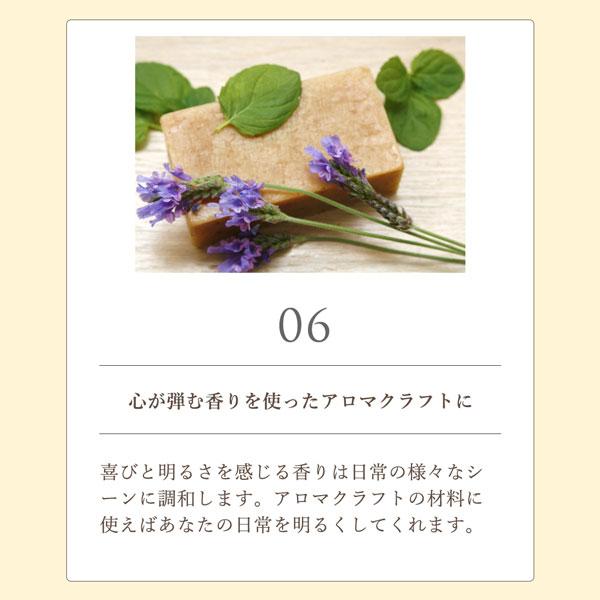 Celebration day (セレブレーションデイ) 5mL