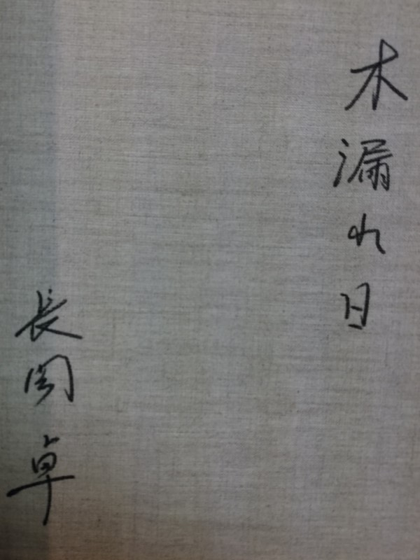 長岡卓(木漏れ日)