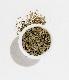 モロッコミント(Moroccan Mint)/有機緑茶 3oz(85G)