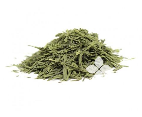 抹茶+(Matcha +) サシェ50袋/有機緑茶