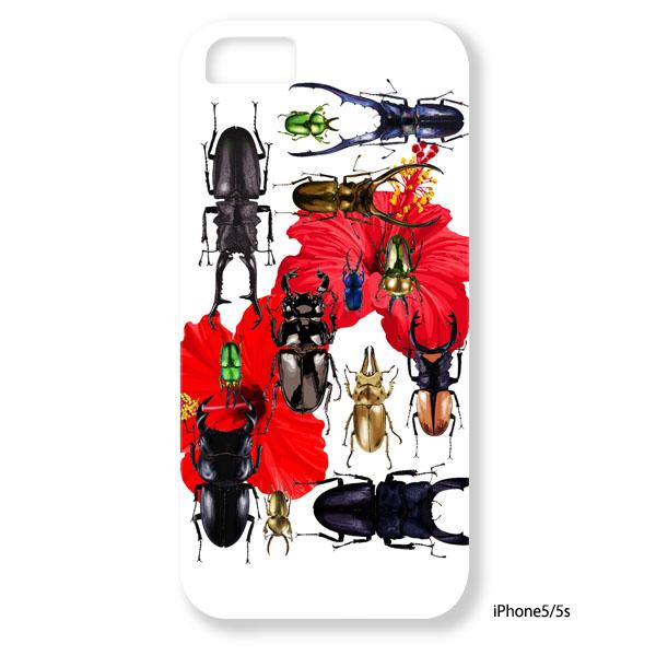 白川哲治【orld stag beetles】