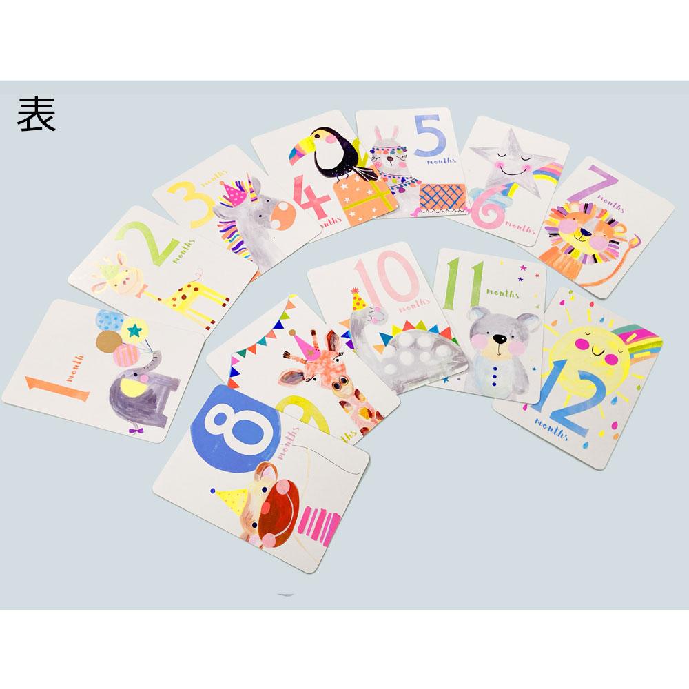 ベビーフォト用カードセット/エレファント