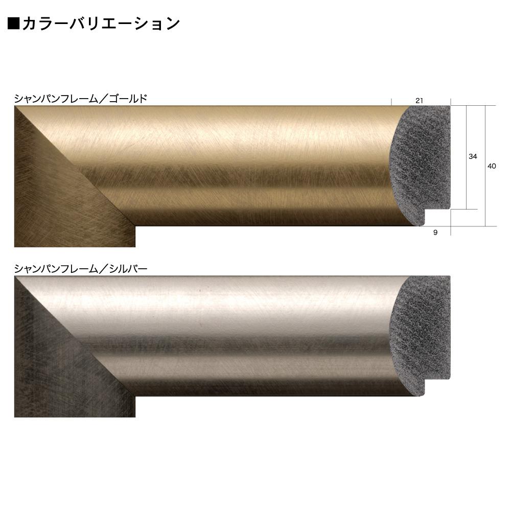 樹脂フレーム/シャンパンフレーム 20角サイズ(200×200mm)