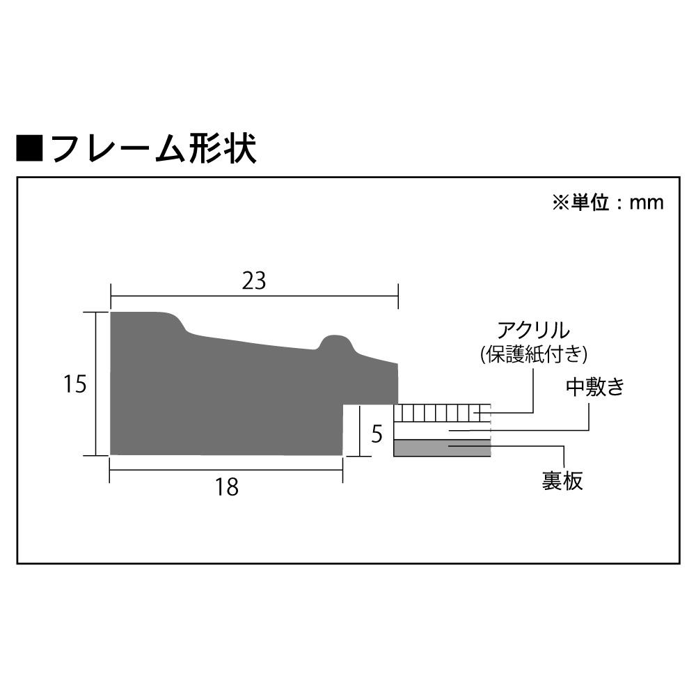 樹脂フレーム/ピアフレーム 色紙サイズ(245×275mm)