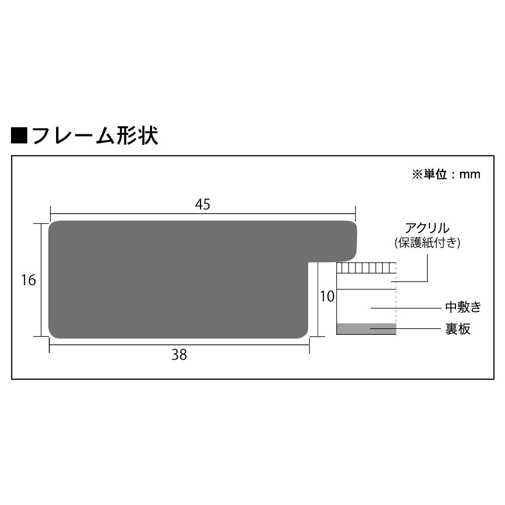樹脂フレーム/フェロードフレーム 色紙サイズ(245×275mm)