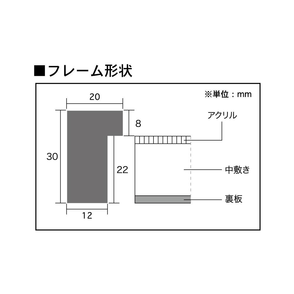 レコードフレーム/LPジャケットフレーム ルストレフレーム(A型) サイズ(316×316mm)