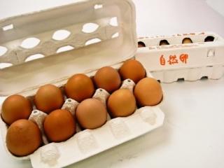 頑固おやじの庭先卵(30ヶ) (日向野農園)