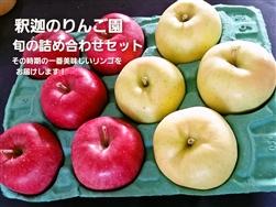 旬のりんご詰め合わせ ご家庭用 6kg (釈迦のりんご園)