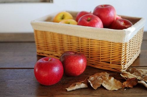 季節のりんご◇家庭用:5kg (したみち農園)