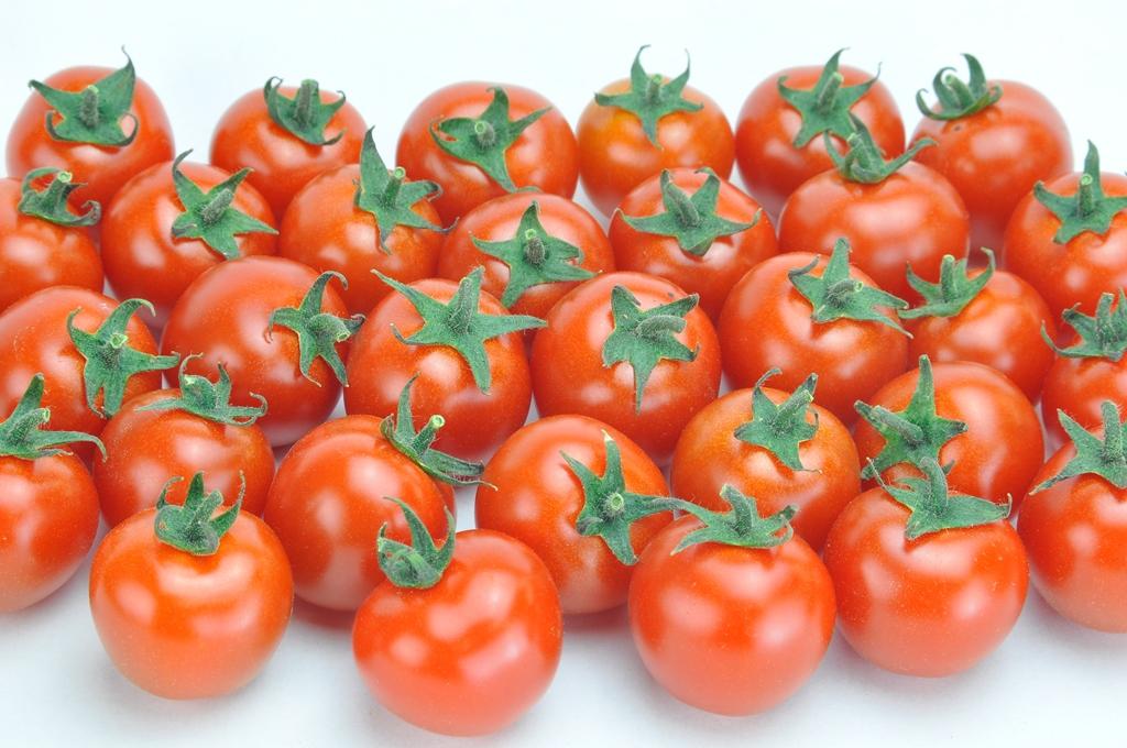 ミニトマト アルル 20粒
