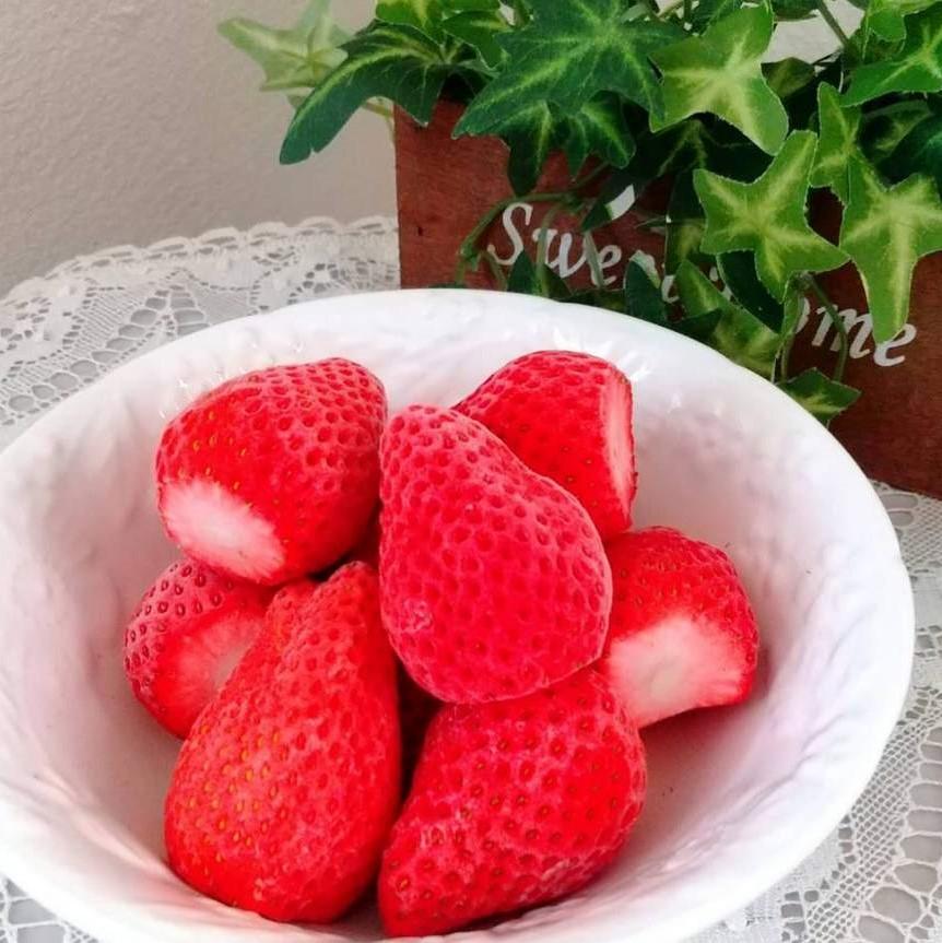 冷凍いちご・やよいひめ 1kg  (いちごファーム 木村農園)