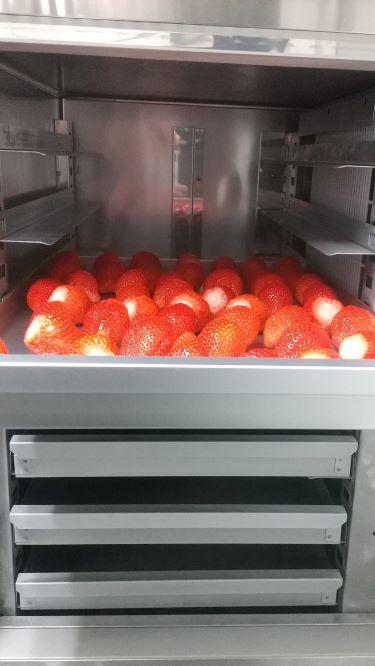 急速冷凍いちご やよいひめ 2kg  (Strawberry Farm 木村農園)