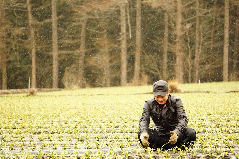 【お試し200g+感謝期間中】 青森県産 田子町 黒にんにく 生産者種子さんの黒にんにく
