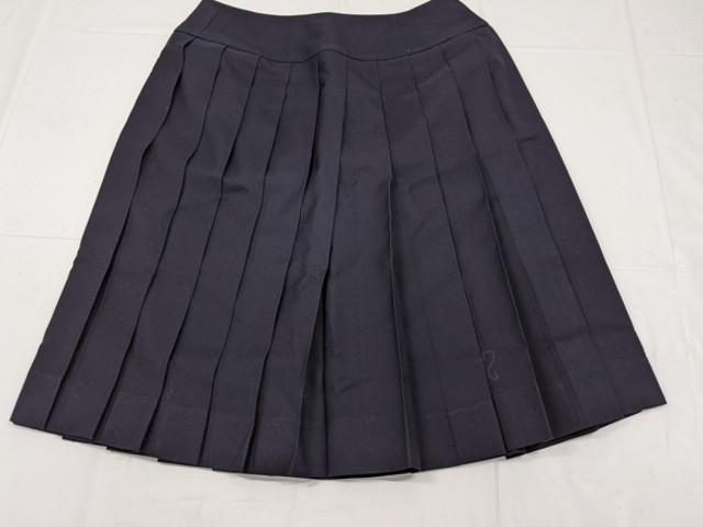 f23 日ノ本学園高校 夏服ブラウス+冬服スカート/yt2124【8DHT】