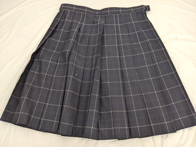 h31 中学校?? 高校?? 冬服スカート+夏服スカート/yt2448【5XJF】