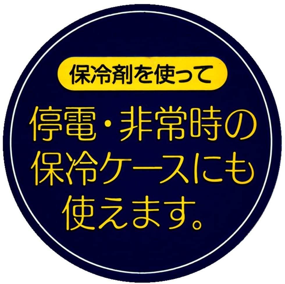 ミニオン保冷バッグ付き行楽ランチセット キャラクター保冷剤付行楽弁当箱 日本製 KCPC4 スケーター 4973307415289