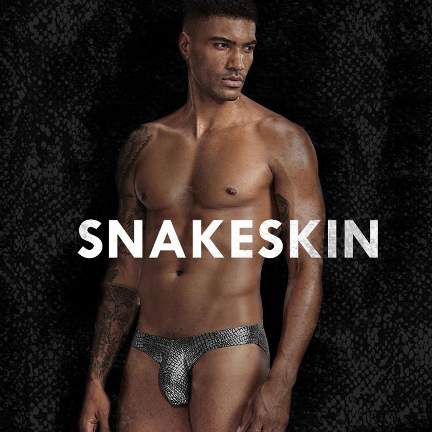 PINKY SENSON/ピンキーセンソン メタリック 立体縫製 ビキニ 光沢 鱗 ビキニブリーフ 男性下着 メンズ パンツ セクシー
