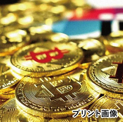 CB_AO4フラットバイザーキャップ/GoldCoin