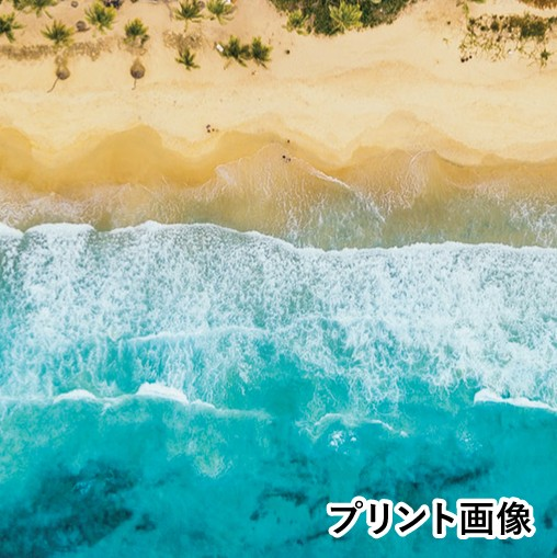 CB_AO4フラットバイザーキャップ/Beach
