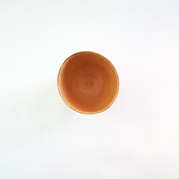 大澤哲哉 Cup 黄 Model:B