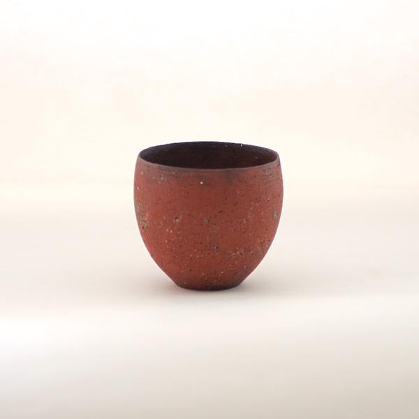 大澤哲哉 Cup 茶 Model:B