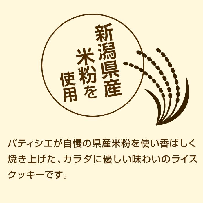 【24箱セット/ケース】尾西のライスクッキー 8枚入 ココナッツ風味長期保存