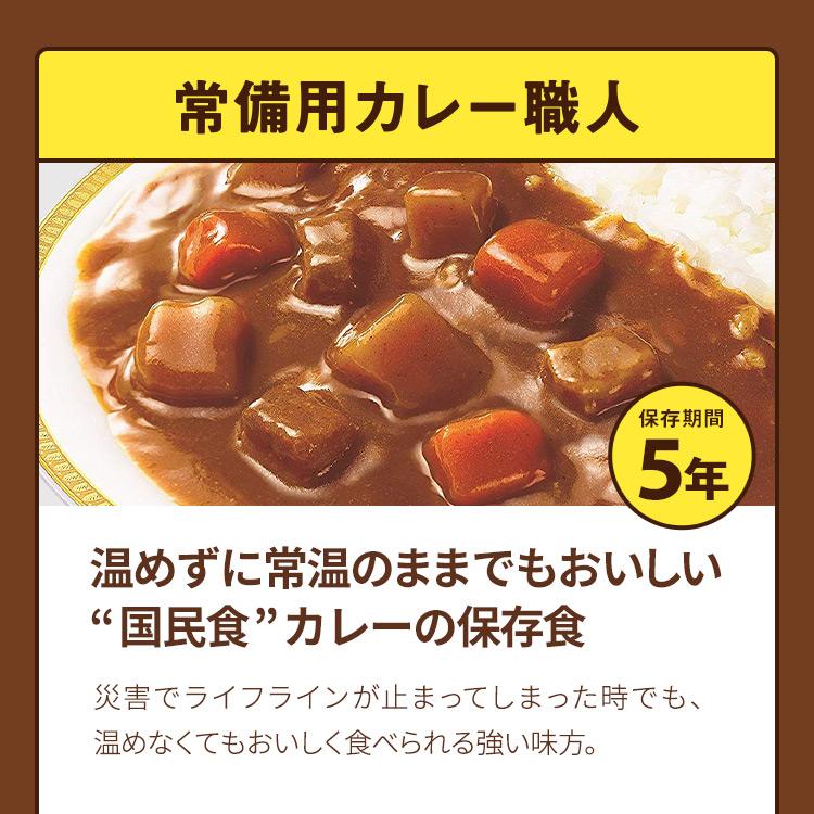 ラピタのカレーセット3日分 繰り返し使える便利な食器セット付【納期1〜5営業日】【g】