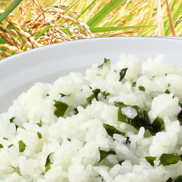 尾西食品 水でも作れるアルファ米 わかめごはん 1食分/100g(賞味期限5年)出来上がり260g