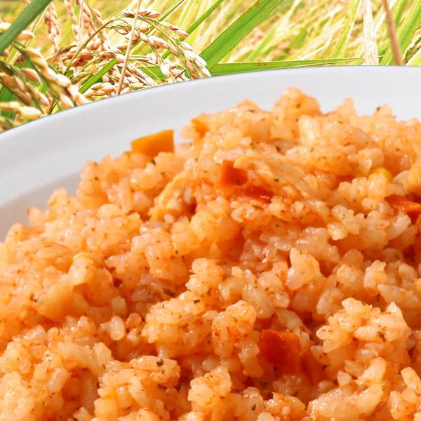 尾西食品 水でも作れるアルファ米 チキンライス 1食分/100g(賞味期限5年)出来上がり260g