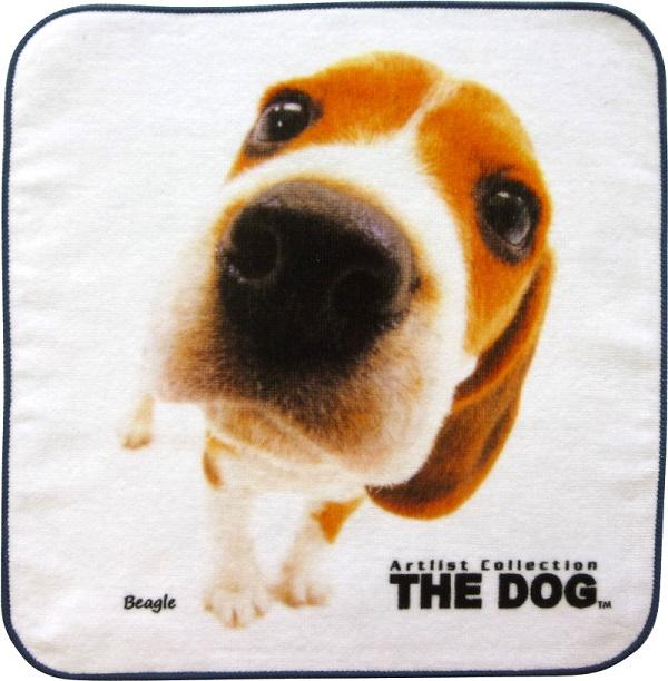 THE DOG   ビーグルタオル