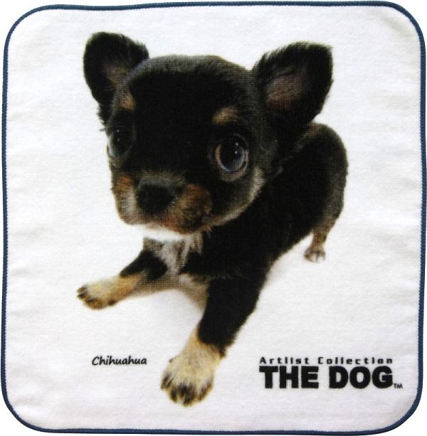 THE DOG   チワワタオル